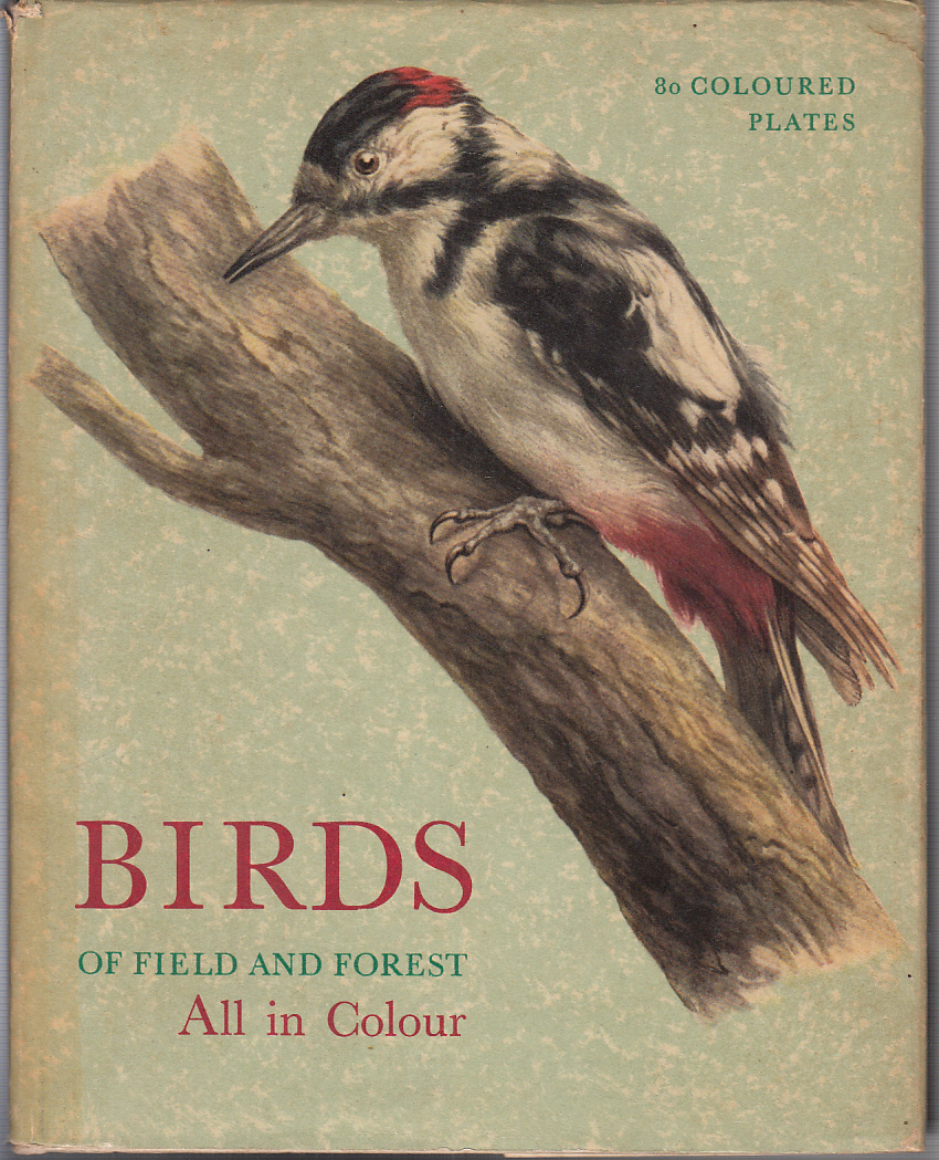 Birds of Field and Forest